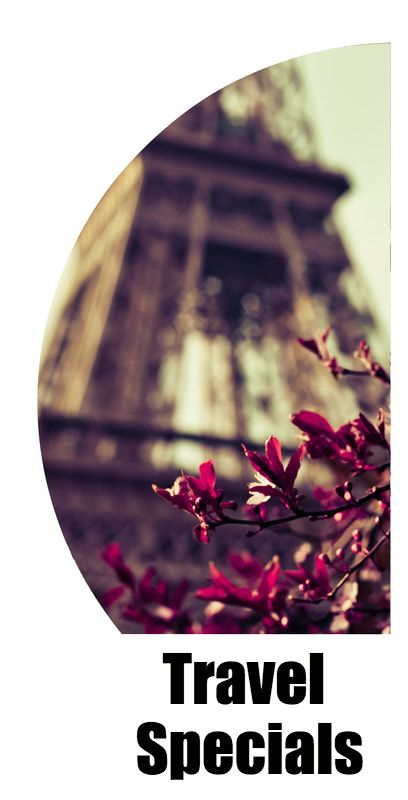 Flowers in front of blurred Eiffel Tower
